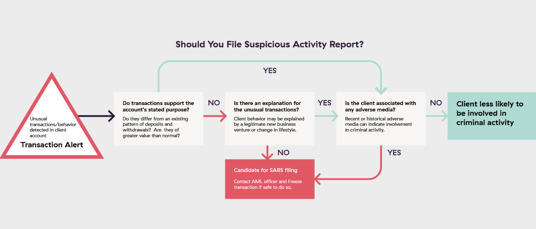 Suspicious Activity Reporting SARS filing